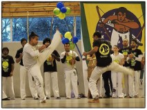 Cours Capoeira Adulte