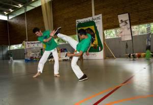 Batizado Capoeira Nantes 2014 Jacobina Arte Parangole (14)