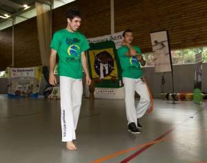 Batizado Capoeira Nantes 2014 Jacobina Arte Parangole (16)