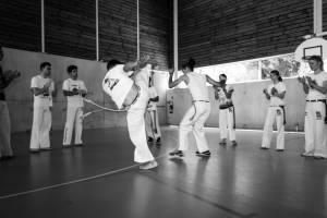 Batizado Capoeira Nantes 2014 Jacobina Arte Parangole (18)