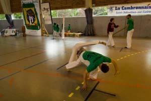 Batizado Capoeira Nantes 2014 Jacobina Arte Parangole (30)