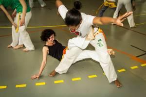 Batizado Capoeira Nantes 2014 Jacobina Arte Parangole (41)