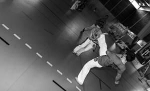 Batizado Capoeira Nantes 2014 Jacobina Arte Parangole (60)