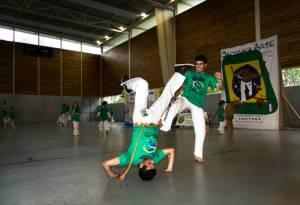 Batizado Capoeira Nantes 2014 Jacobina Arte Parangole (66)