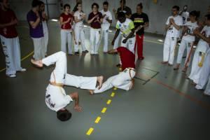 Batizado Capoeira Nantes 2014 Jacobina Arte Parangole (6)