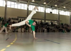 Batizado Capoeira Nantes 2014 Jacobina Arte Parangole (91)