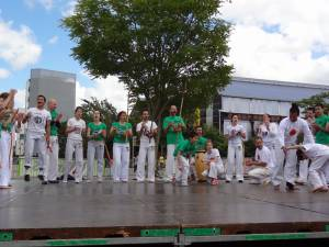 Demonstration Capoeira Fete Du Sourire (7)
