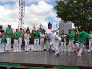 Demonstration Capoeira Fete Du Sourire (8)