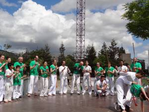 Demonstration Capoeira Fete Du Sourire (9)
