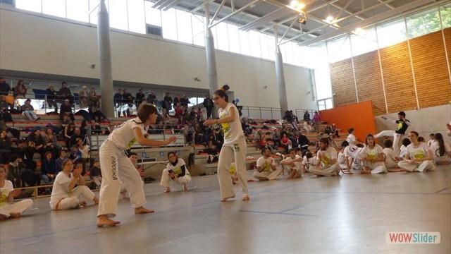 11eme festival capoeira nantes 2016 (29)