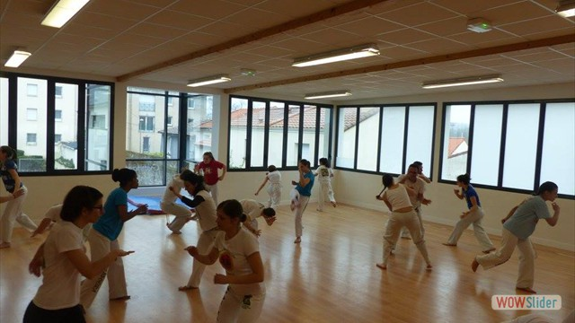 11eme festival capoeira nantes 2016 (3)