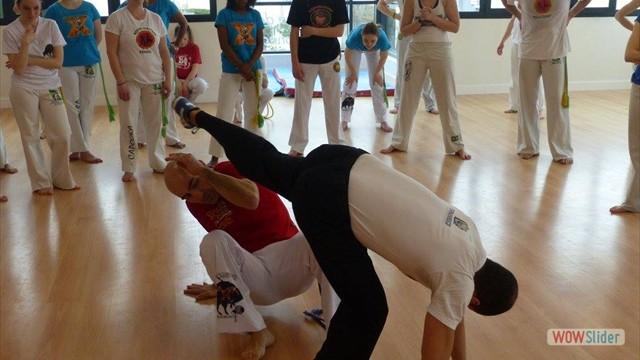11eme festival capoeira nantes 2016 (41)