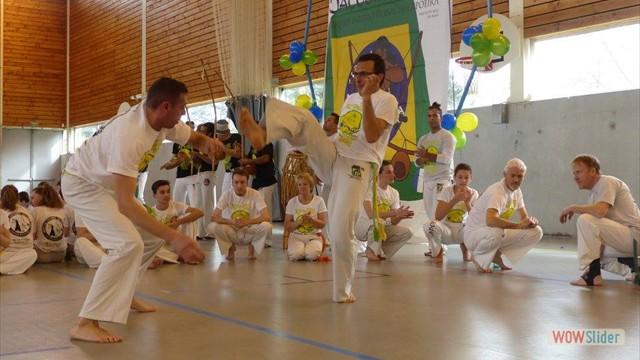 11eme festival capoeira nantes 2016 (59)