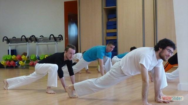 11eme festival capoeira nantes 2016 (65)