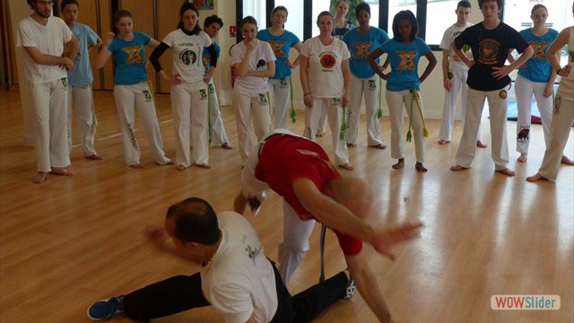 11eme festival capoeira nantes 2016 (66)