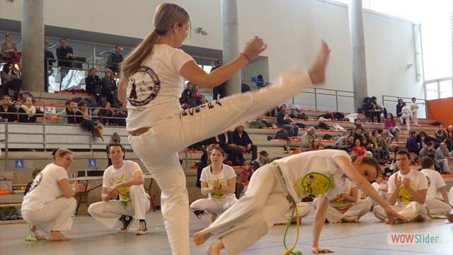 11eme festival capoeira nantes 2016 (70)