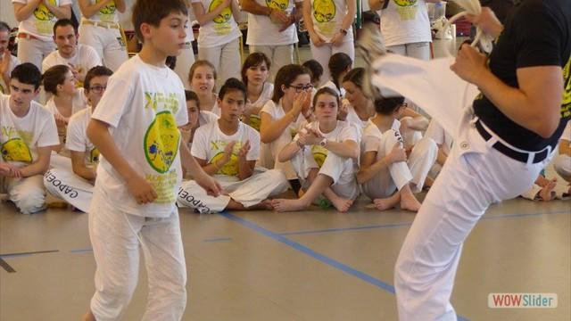 11eme festival capoeira nantes 2016 (9)