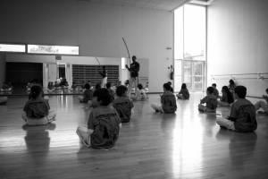 Batizado Capoeira Nantes 2014 Jacobina Arte Parangole (64)