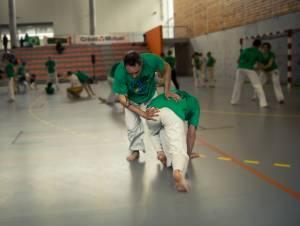 Batizado Capoeira Nantes 2014 Jacobina Arte Parangole (65)