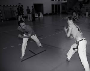 Batizado Capoeira Nantes 2014 Jacobina Arte Parangole (81)