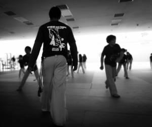 Batizado Capoeira Nantes 2014 Jacobina Arte Parangole (83)