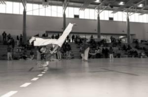 Batizado Capoeira Nantes 2014 Jacobina Arte Parangole (85)
