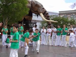 Demonstration Capoeira Fete Du Sourire (1)