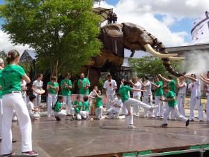 Demonstration Capoeira Fete Du Sourire (2)