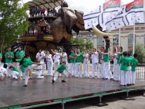 Demonstration Capoeira Fete Du Sourire (3)
