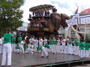 Demonstration Capoeira Fete Du Sourire (4)